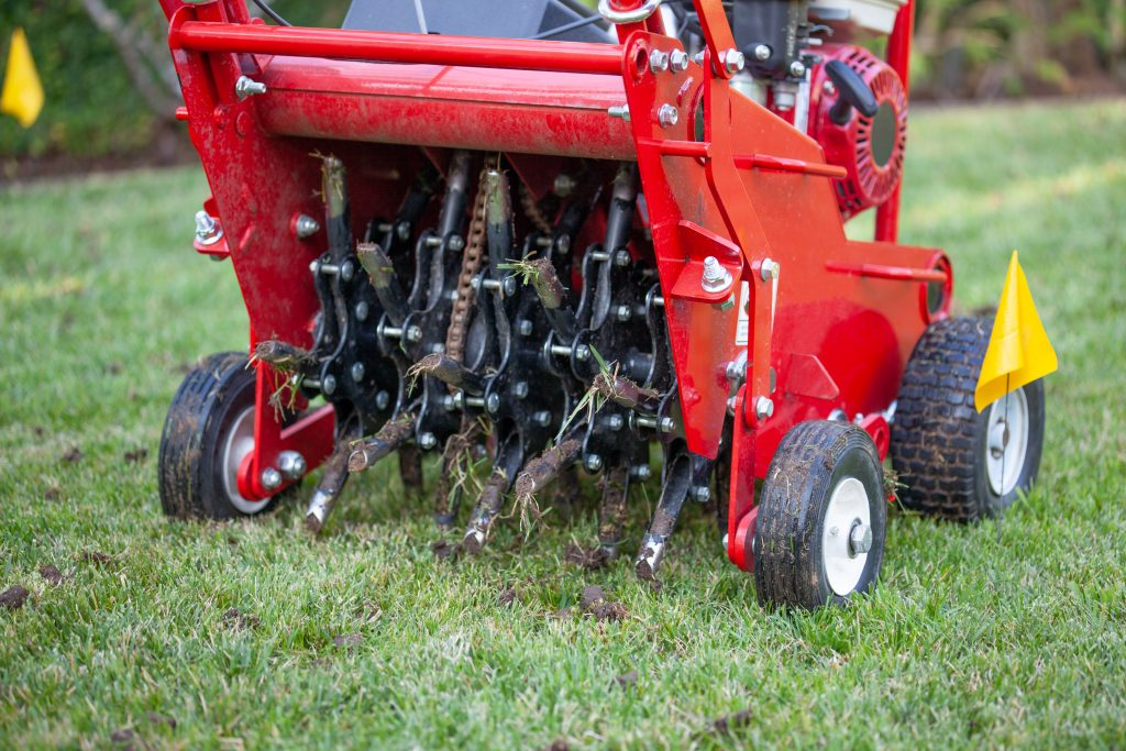 Rocky Point NY Lawn Care and Turf Restoration