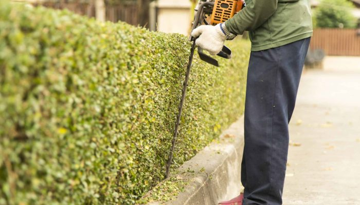 maintenance-landscape-worker_581438512